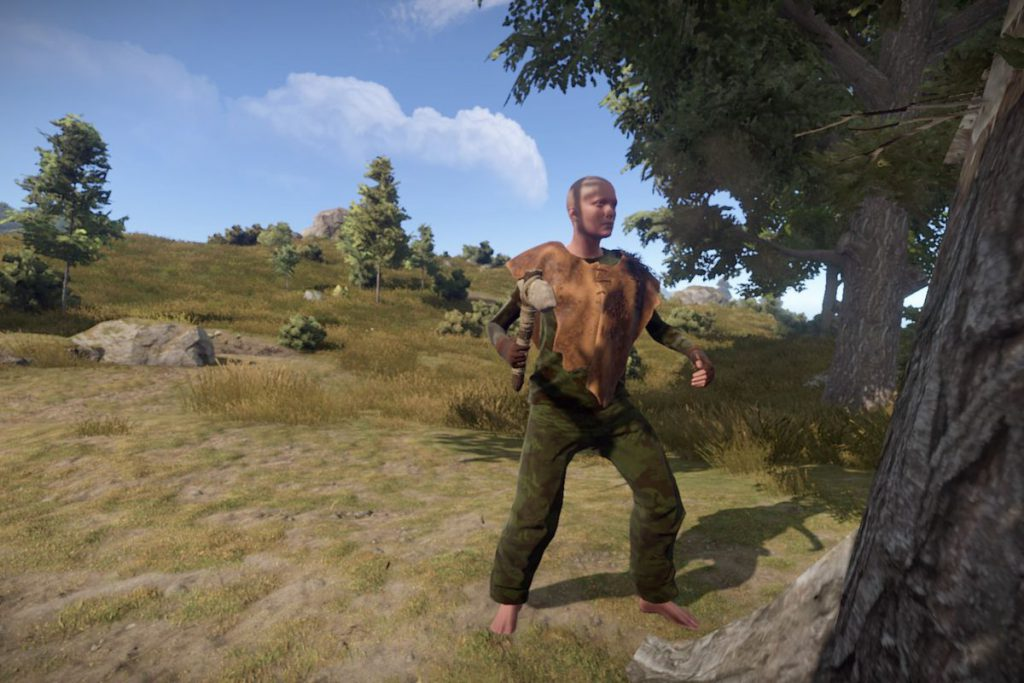 rust is a game similar to dayz